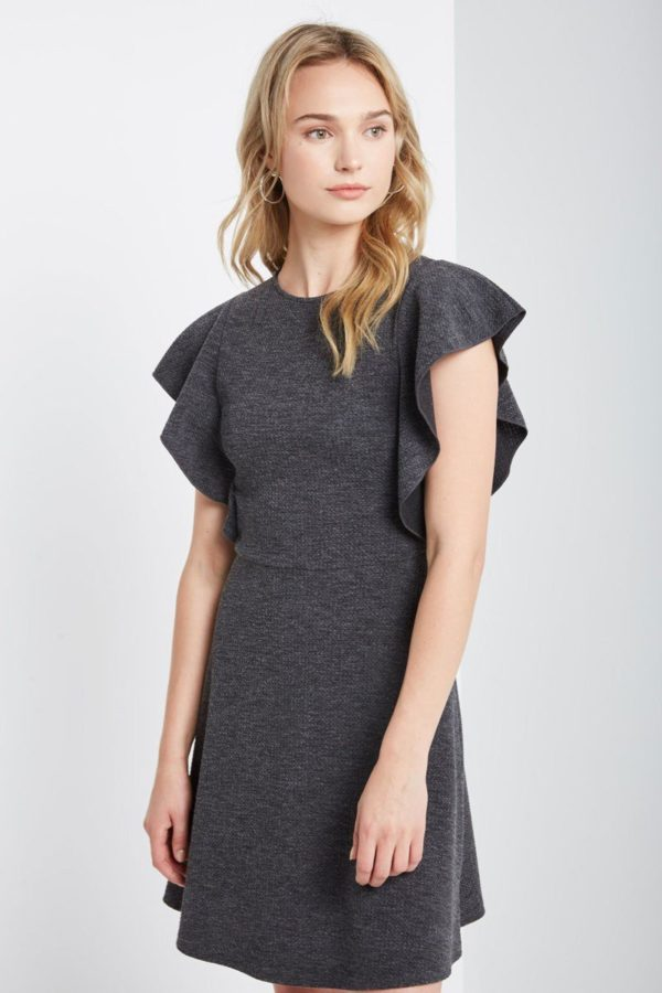Ruffled Sleeve Fit and Flare Dress